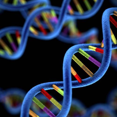 Testarea genetică – ar trebui să fii testat pentru riscul Alzheimer?